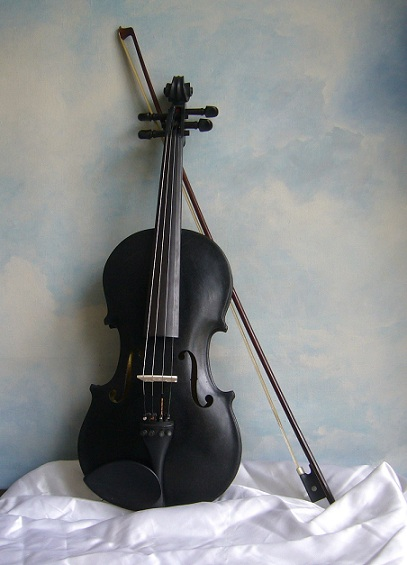 Blackbird violin.jpg