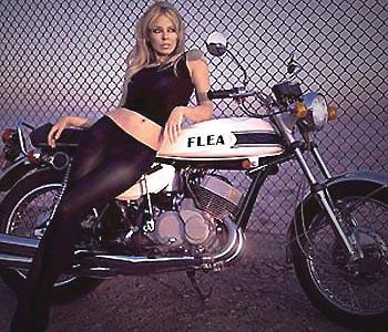 KylieMotorcycle.jpg