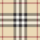 burberry_nova_check.jpg