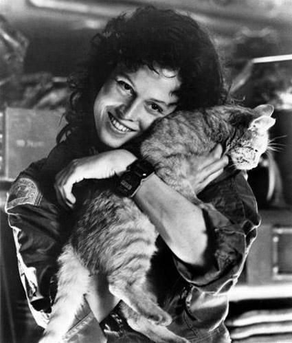 ripley-and-jones-the-cat.jpg
